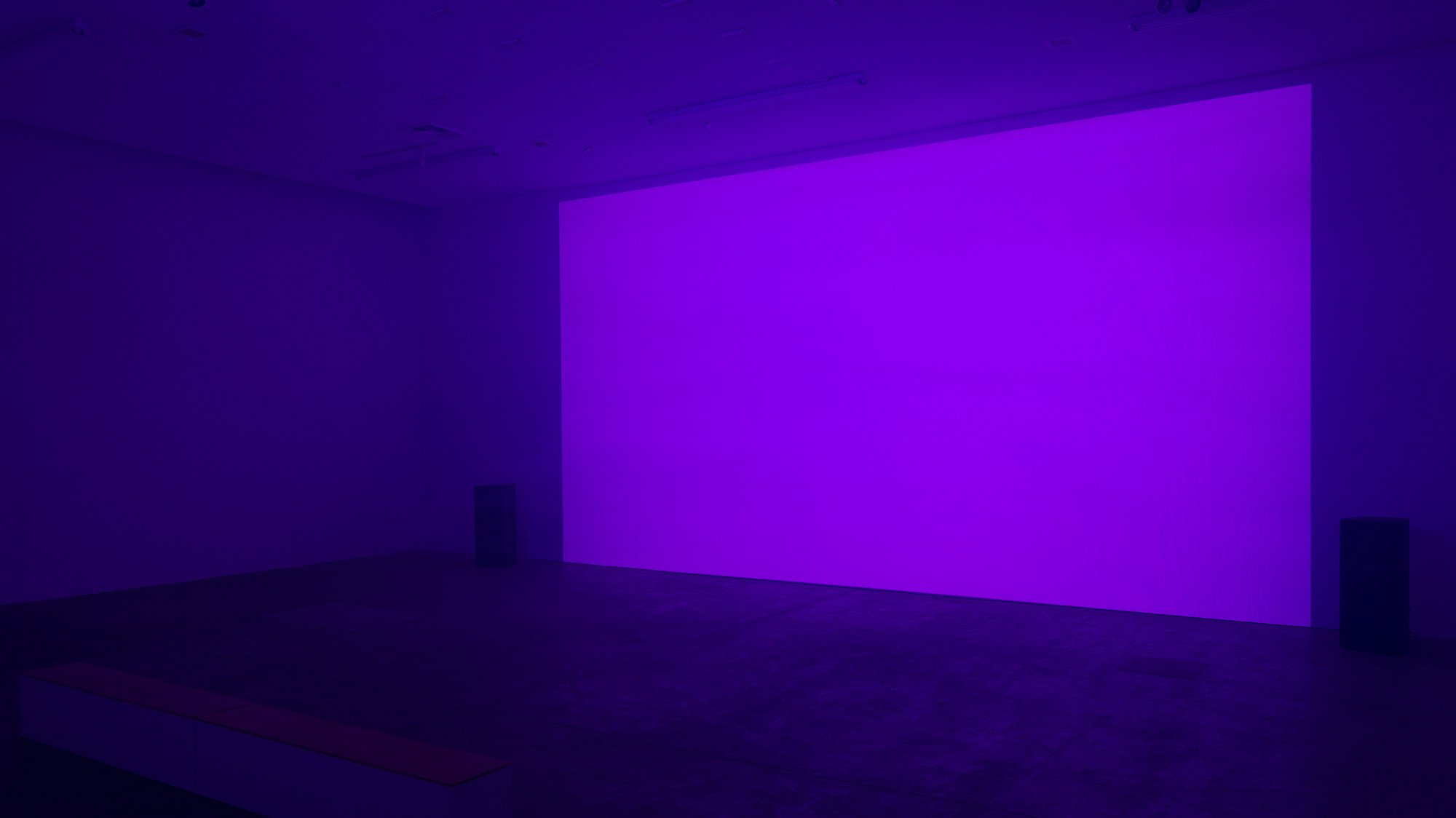 Repose Installation (purple)
